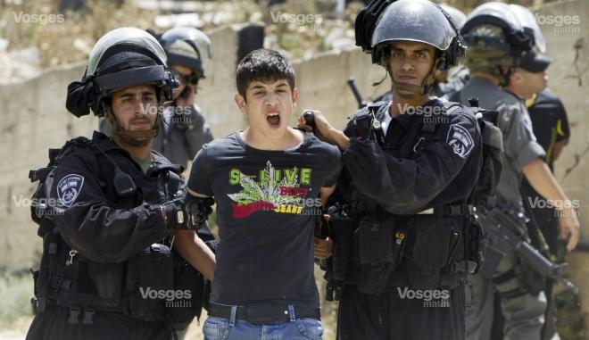 un-jeune-palestinien-arrete-hier-alors-que-les-bulldozers-israeliens-viennent-detruire-sa-maison-photo-afp-1433508674