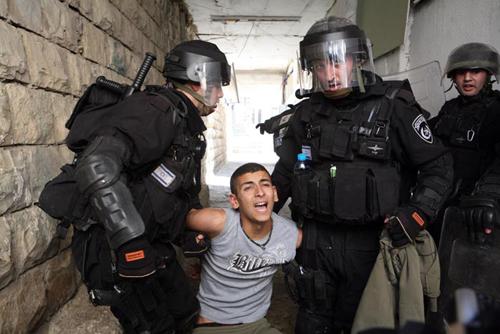 -z-palestine-sf