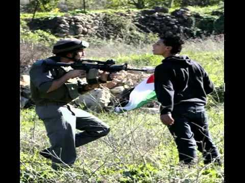-z-palestine222