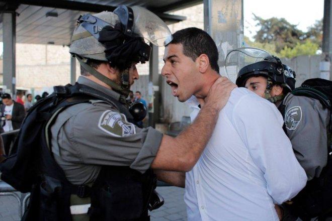 -z-palestinesdfd